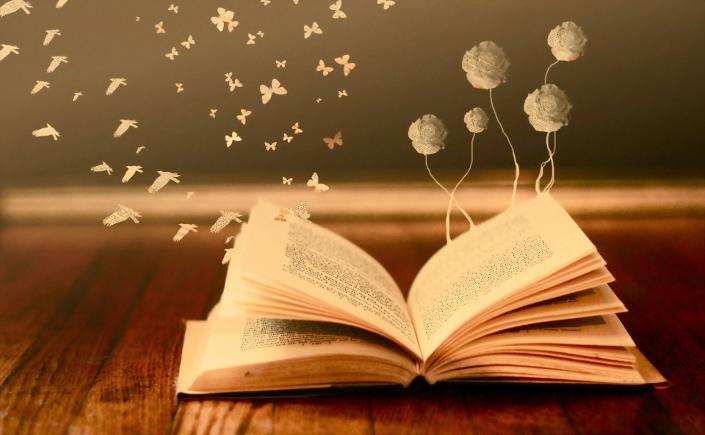 Λογοτεχνία στην εκπαίδευση