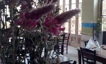 """Συνεταιριστικό καφενείο παντοπωλείο """"Πλουμί"""""""